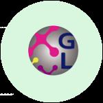 G&L Soluciones en Infraestructura Tecnológica